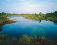Lago marsh Fotos de archivo