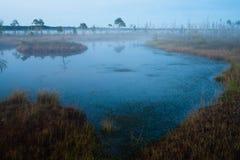 Lago marsh Imagen de archivo