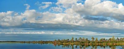 Lago Marshy Immagine Stock Libera da Diritti