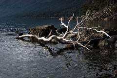 Lago Mascardi fotos de stock royalty free
