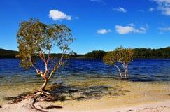 Lago McKenzie Immagini Stock
