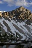 Lago meadow imagens de stock royalty free