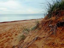 Lago Michigan di Chicago della spiaggia Fotografia Stock Libera da Diritti