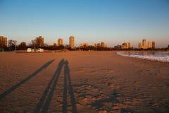 Lago Michigan in inverno Immagini Stock Libere da Diritti