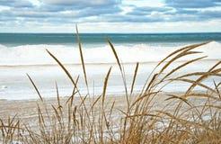 Lago Michigan no inverno fotos de stock royalty free