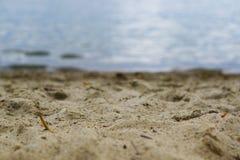 Lago Miedwie, Stargard, Polônia Paisagem do lago e da areia do foco seletivo Fotos de Stock
