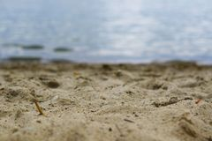 Lago Miedwie, Stargard, Polonia Lago del fuoco selettivo e paesaggio della sabbia Fotografie Stock
