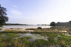 Lago Minneriya, reservatório Fotografia de Stock Royalty Free