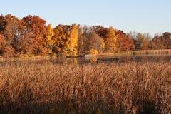 Lago minnesota en la salida del sol fotografía de archivo libre de regalías