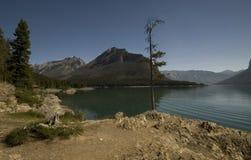 Lago Minnewanka Fotografie Stock Libere da Diritti