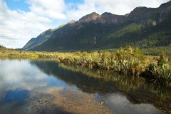 Lago mirror em Milford Sound em Nova Zelândia Imagem de Stock Royalty Free