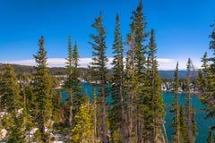 Lago mirror en el bosque del Estado del arco de la medicina, Wyoming Imagen de archivo