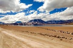 Lago Miscanti no Chile Fotos de Stock Royalty Free