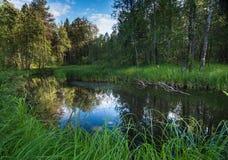 Lago misterioso Fotos de Stock