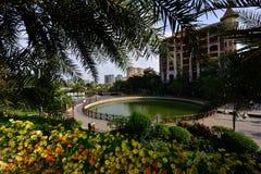 Lago moderno apartment del giardino fotografia stock libera da diritti