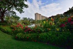 Lago moderno apartment do jardim Imagem de Stock Royalty Free