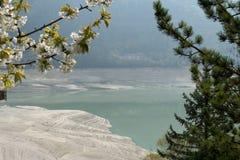 lago molveno岸在trentino的在意大利 免版税库存照片