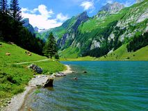 lago, montaña, agua, paisaje, naturaleza, montañas, cielo, azul, río, bosque, verano, reflexión, verde, escénico, visión, viaje,  imagen de archivo