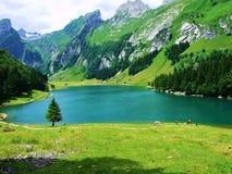 lago, montagna, paesaggio, acqua, natura, montagne, cielo, riflessione, blu, foresta, estate, fiume, verde, nuvole, viaggio, vist Fotografia Stock