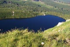 Lago in montagne Immagini Stock Libere da Diritti