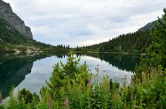 Lago in montagne Immagini Stock