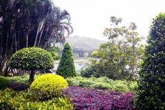 Lago, montanha e tipos diferentes de plantas no parque Fotografia de Stock Royalty Free