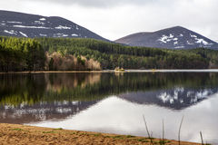 Lago Morlich Immagine Stock Libera da Diritti