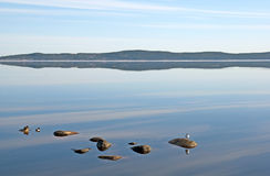 Lago morning Immagine Stock Libera da Diritti