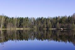 Lago morning cerca de St Petersburg en junio Fotos de archivo libres de regalías