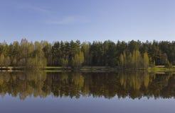 Lago morning cerca de St Petersburg en junio Fotografía de archivo libre de regalías