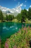 Lago mountain Immagini Stock