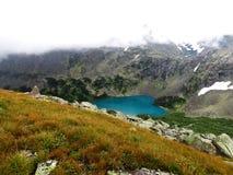 Lago mountain in altai Fotografia Stock