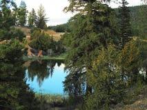 Lago mountain cercado pelo pinho, pelo zimbro e pelo Cedar Trees Under Gray Sky Fotos de Stock Royalty Free