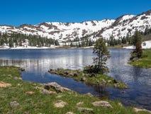 Lago mountain con gli alberi e la neve Fotografia Stock