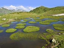 Lago mountain con le piccole isole di galleggiamento coperte di erba Fotografie Stock