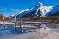 Lago mountain del yermo de Alaska Fotografía de archivo