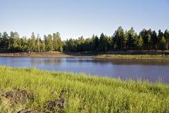Lago mountain do Arizona fotos de stock