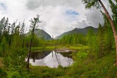 Lago mountain em algum lugar em montanhas de Sayan Imagem de Stock Royalty Free