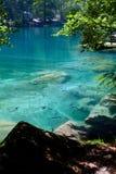 Lago mountain en bosque Imagenes de archivo