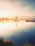 Lago mountain en la atmósfera soñadora, árbol en la isla Imagenes de archivo