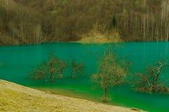 Lago mountain, Geamana, Romênia Imagem de Stock