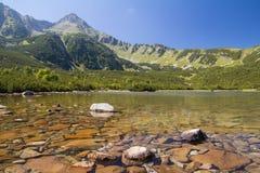 Lago mountain nell'alto paesaggio di estate di tatras Immagini Stock