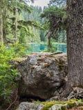 Lago mountain no verão Fotos de Stock Royalty Free