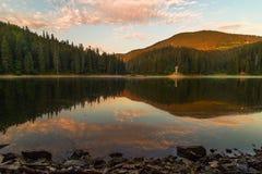 Lago mountain rodeado por la armonía del bosque del lago del synevyr de la naturaleza en Cárpatos Ucrania imagen de archivo