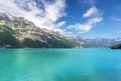 Lago mountain - Svizzera Immagini Stock Libere da Diritti
