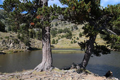 Lago Moutain Imagen de archivo libre de regalías