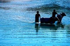 Lago Myanmar Inle (Burma) Fotos de Stock Royalty Free