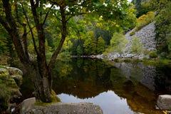 Lago mystical Lac de Fischboedle nelle montagne dei Vosgi fotografia stock libera da diritti