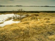 Lago Myvatn en Islandia Fotos de archivo