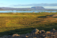 Lago Myvatn, Islândia Fotografia de Stock